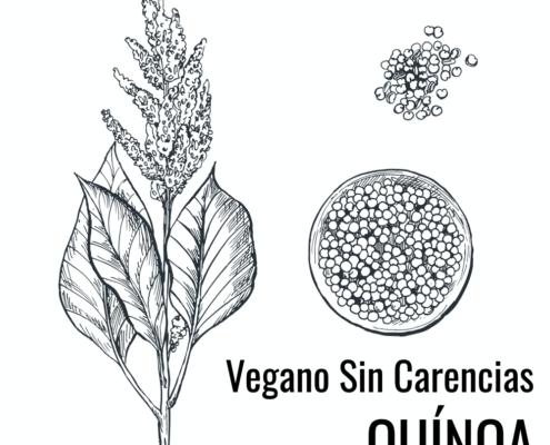 quinoa en vegetarianos